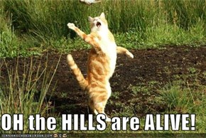 OH the HILLS are ALIVE!