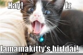 Hay!                          Iz  Jamamakitty's birfdai!