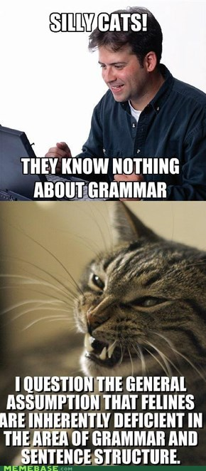 Reframe: One LOLcat Disagrees