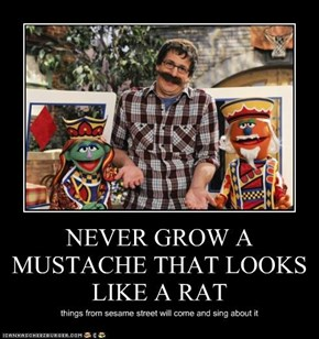 NEVER GROW A MUSTACHE THAT LOOKS LIKE A RAT