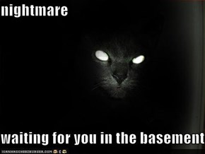nightmare  waiting for you in the basement