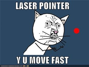 LASER POINTER  Y U MOVE FAST