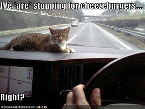 We *are* stopping for cheezeburgers....  Right?