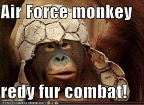 Air Force monkey  redy fur combat!