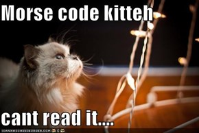 Morse code kitteh  cant read it....