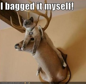 I bagged it myself!