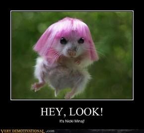 HEY, LOOK!