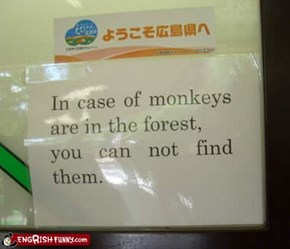 If a Monkey Falls in the Forest, and Nobody Can Find...