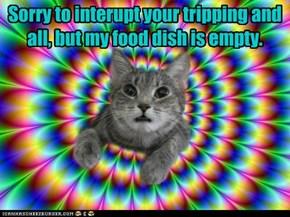 Sorry to interupt
