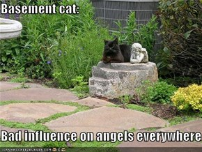 Basement cat:  Bad influence on angels everywhere