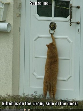 Scuze me...  kitteh is on the wrong side of the door!