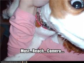 Must... Reach....Camera....