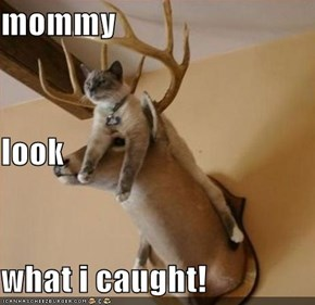 mommy look what i caught!