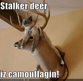Stalker deer  iz camouflagin!