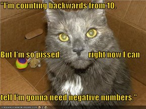 """I'm counting backwards"