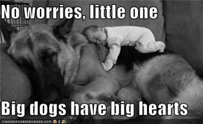 No worries, little one  Big dogs have big hearts