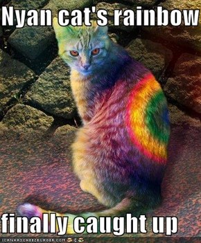 Nyan cat's rainbow  finally caught up