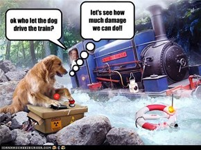 dogs..never let them drive trains