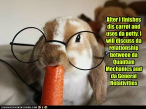 After I finishes dis carrot and uses da potty, I will discuss da relationship between da Quantum Mechanics and da General Relativities
