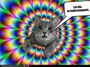 too much cat nip....