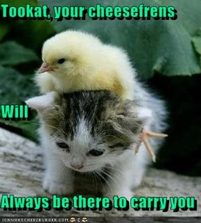 Tookat, your cheesefrens Will  Always be there to carry you