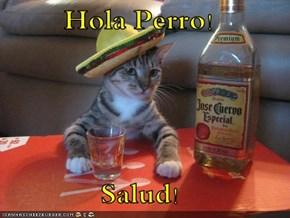 Hola Perro!  Salud!
