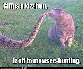 Giffus a kizz hun,