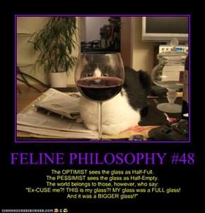 FELINE PHILOSOPHY #48