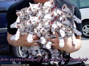 an armload of squee for tookat