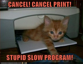 CANCEL! CANCEL PRINT!  STUPID SLOW PROGRAM!