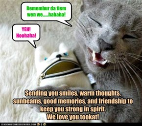 With warm regards, from allcatsloved