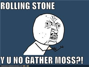 ROLLING STONE  Y U NO GATHER MOSS?!