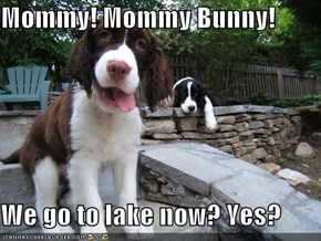 Mommy! Mommy Bunny!  We go to lake now? Yes?