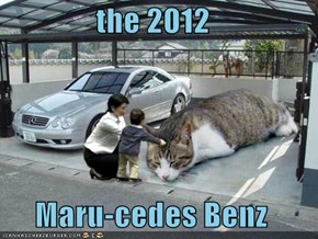 the 2012  Maru-cedes Benz