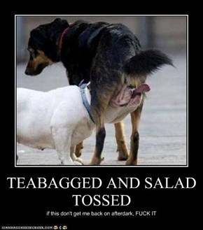TEABAGGED AND SALAD TOSSED