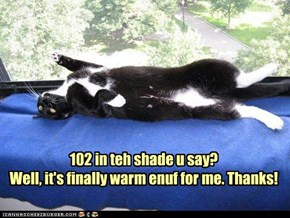 102 in teh shade u say? Well, it's finally warm enuf for me. Thanks!