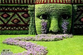 Garden Art WIN
