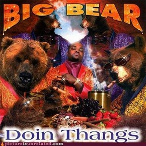 Bears and Rap: what a real man needs!