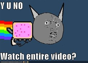 Y U NO   Watch entire video?