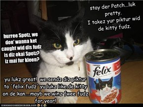 Spotz & Patch Hav a Plan (if they dont get caught)