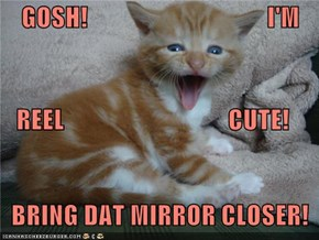 GOSH!                                   I'M    REEL                                CUTE!   BRING DAT MIRROR CLOSER!
