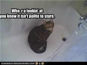 who r u lookin' at