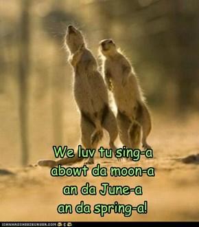 A sing-an kinda day!