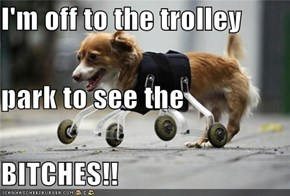 I'm off to the trolley park to see the BITCHES!!