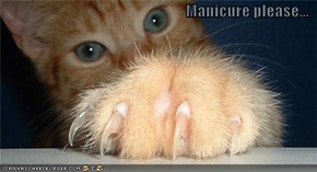 Manicure please...