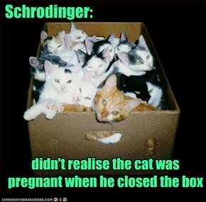 Schrodinger: