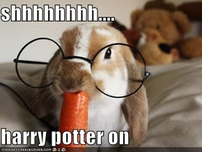 shhhhhhhh....  harry potter on
