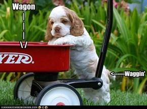 Wagon   |   |   |    /