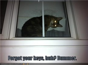 Forgot your keys, huh? Bummer.