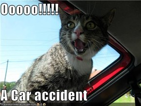 Ooooo!!!!!  A Car accident